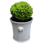 Estate Lion Planter